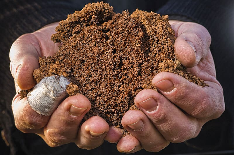 Čotar - Terra rossa zemlja v roki