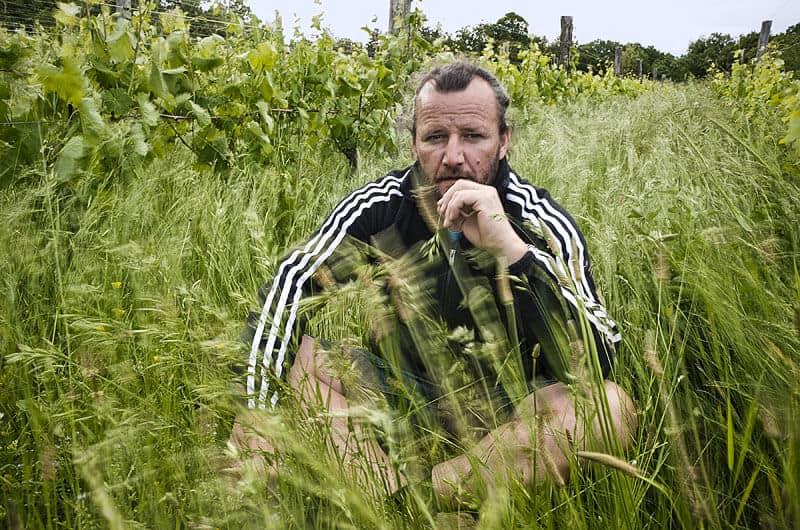 Čotar - Vasja Čotar - Ivanji grad Kras - trava v vinogradu